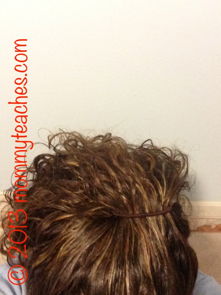 What I used to place my curls up in my high ponytail